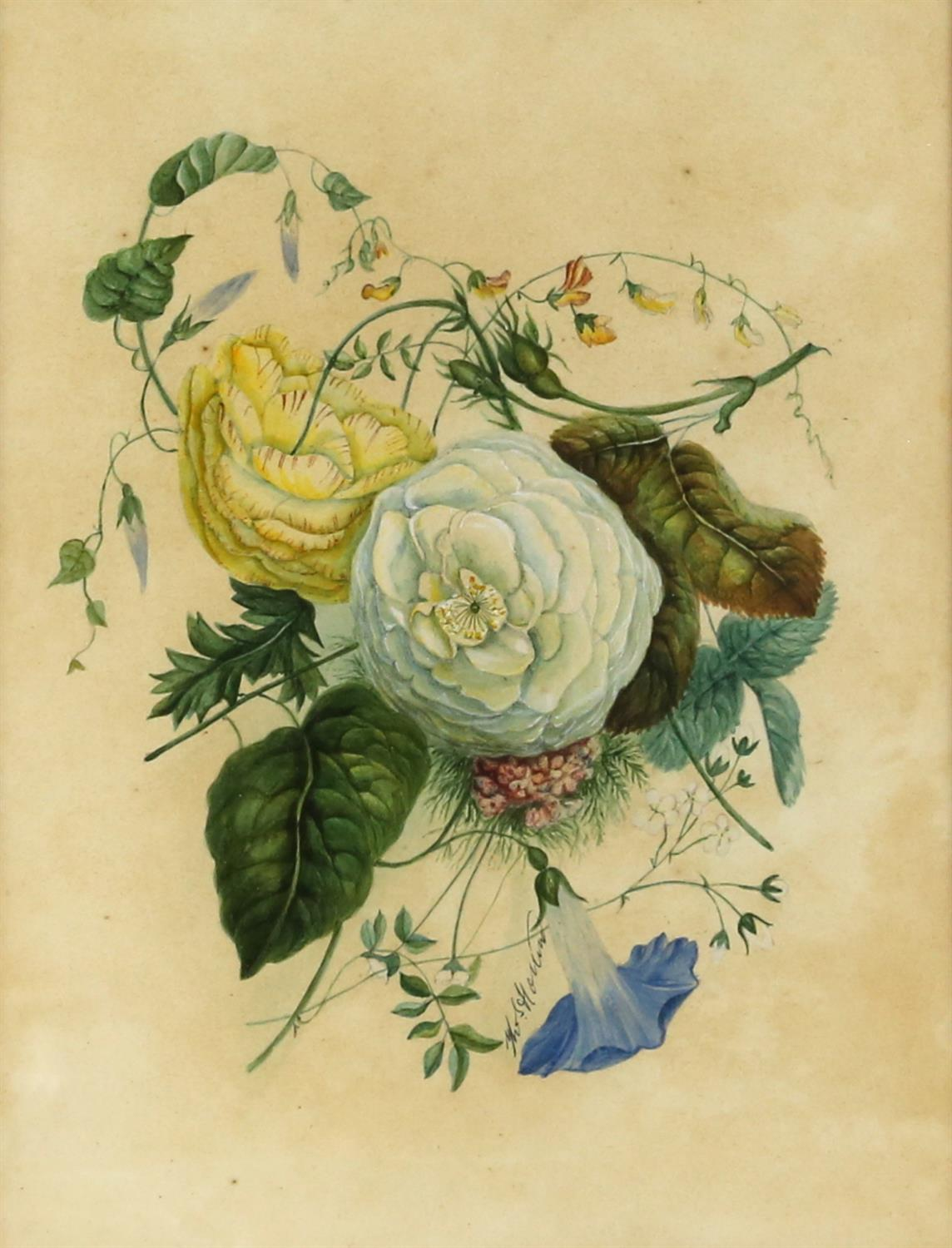 Thomas Holland (British, 1795-1865), set of four flower studies, signed, watercolours, - Image 5 of 7