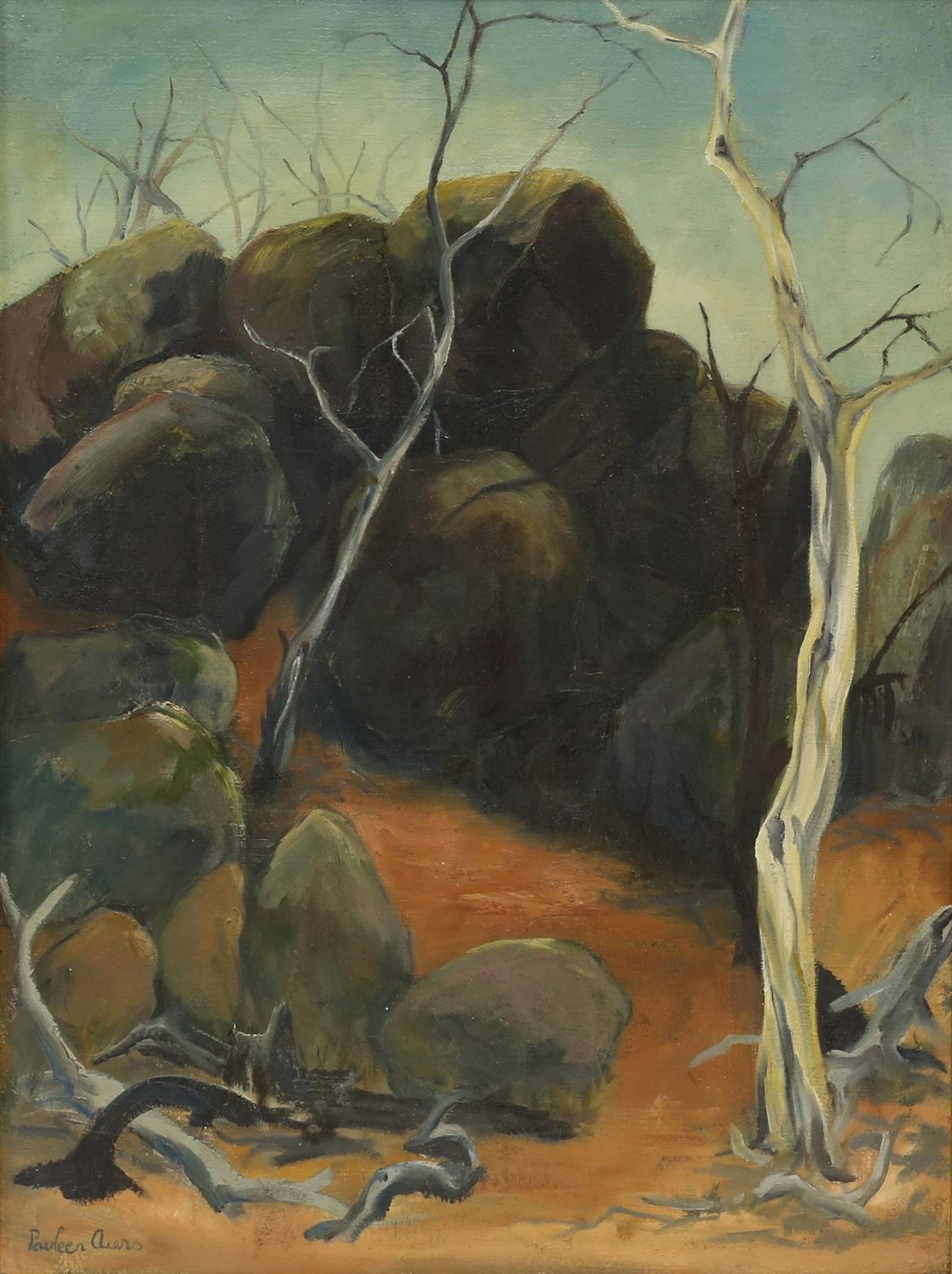 Pauleen Aiers (20th century) Rocky Gully, Gudgenby NSW. Oil on canvas, signed lower left,