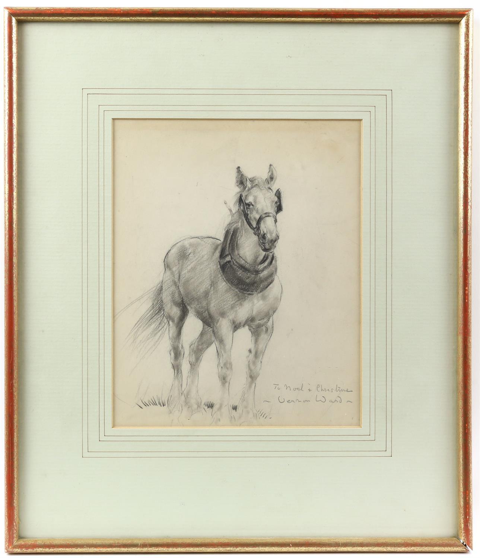 Vernon de Beauvoir Ward (British, 1905-1985). Portrait of a Heavy Horse. Dedication inscription and - Image 2 of 3