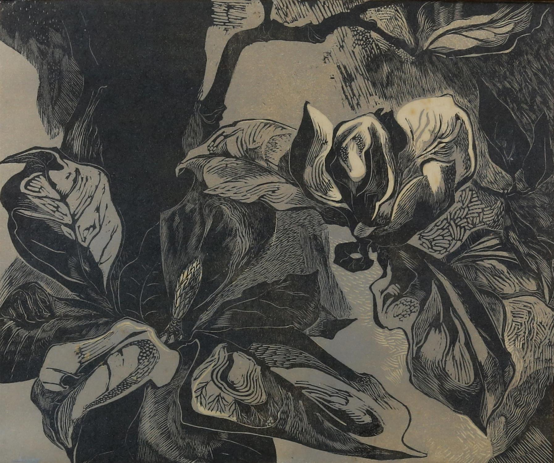 Woodcut print of Magnolias, unsigned, c1950's, 30.5 x 26cm. Framed and glazed.