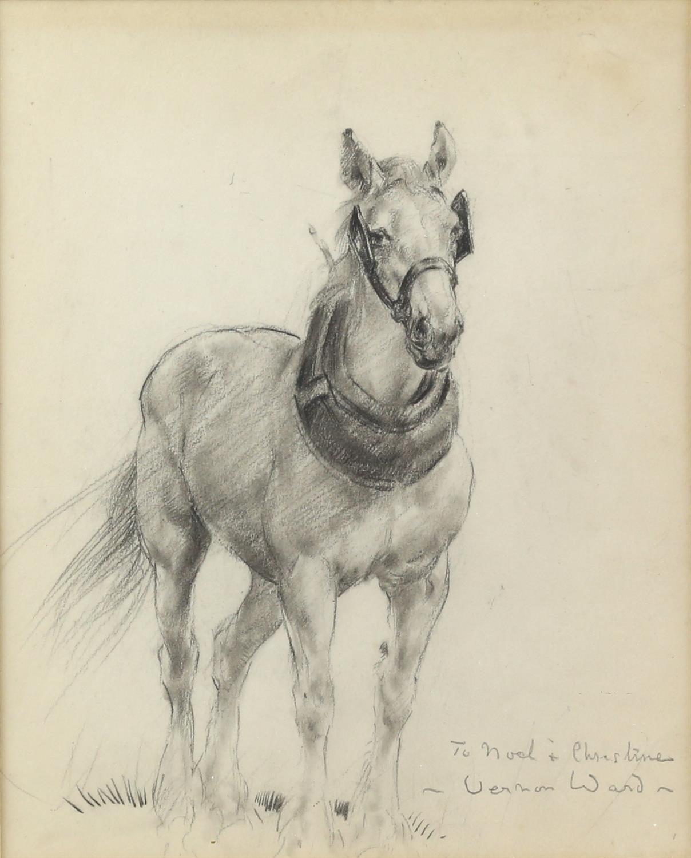 Vernon de Beauvoir Ward (British, 1905-1985). Portrait of a Heavy Horse. Dedication inscription and