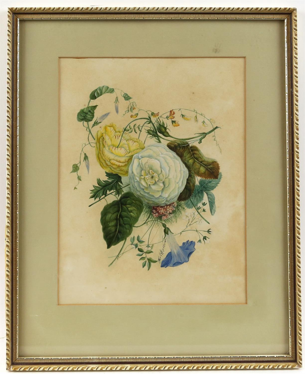 Thomas Holland (British, 1795-1865), set of four flower studies, signed, watercolours, - Image 6 of 7