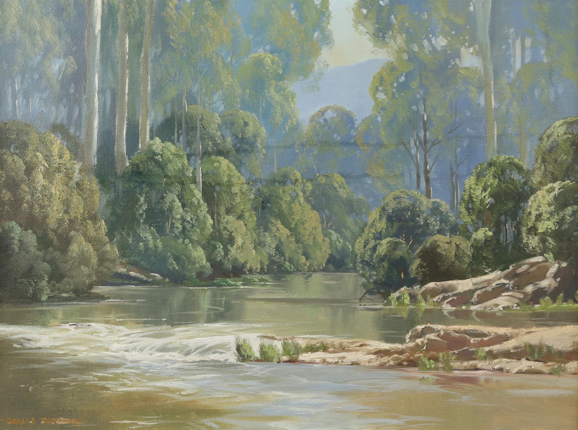 Gerard Mutsaers (Australian b. 1947), 'Morning Light, Yarra River, Warburton', signed, oil on board,