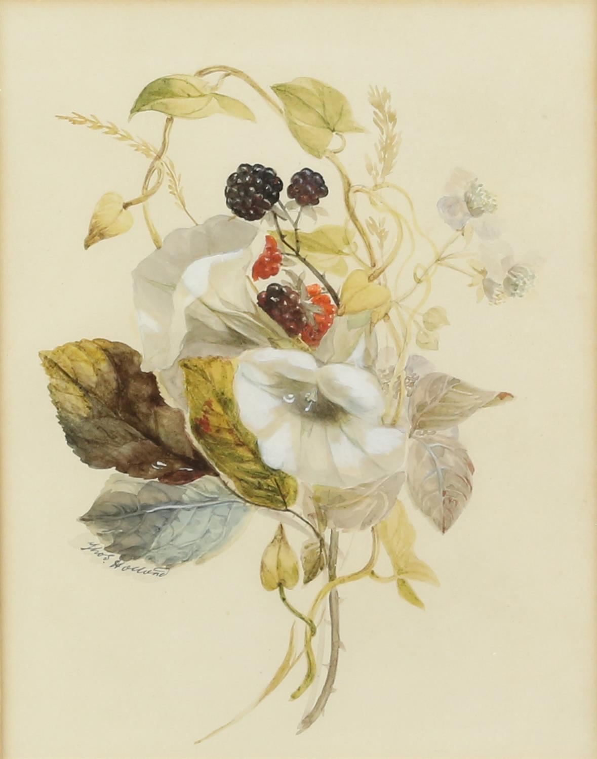 Thomas Holland (British, 1795-1865), set of four flower studies, signed, watercolours, - Image 2 of 7
