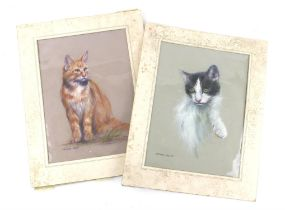 Anthony Hedges (twentieth century), pair of pastel drawings of cats. Signed. Both 40 x 29cm,
