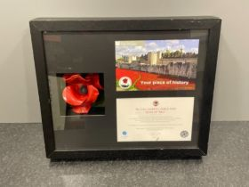 Piece of history 'Blood swept lands and seas of red' thee Tower of London poppy with display case