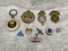 Various Badges including RAF