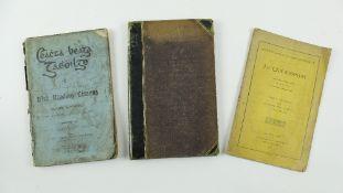 Borthwick (N.)Ceachta Beaga Gaedhilge - Irish Reading Lessons, 3 vols. D. 1902,First, illustration