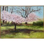 Harrie McManus 21st Century ''The Cherry Blossoms,'' O.O.C., signed, 29'' x 39'' (73cms x