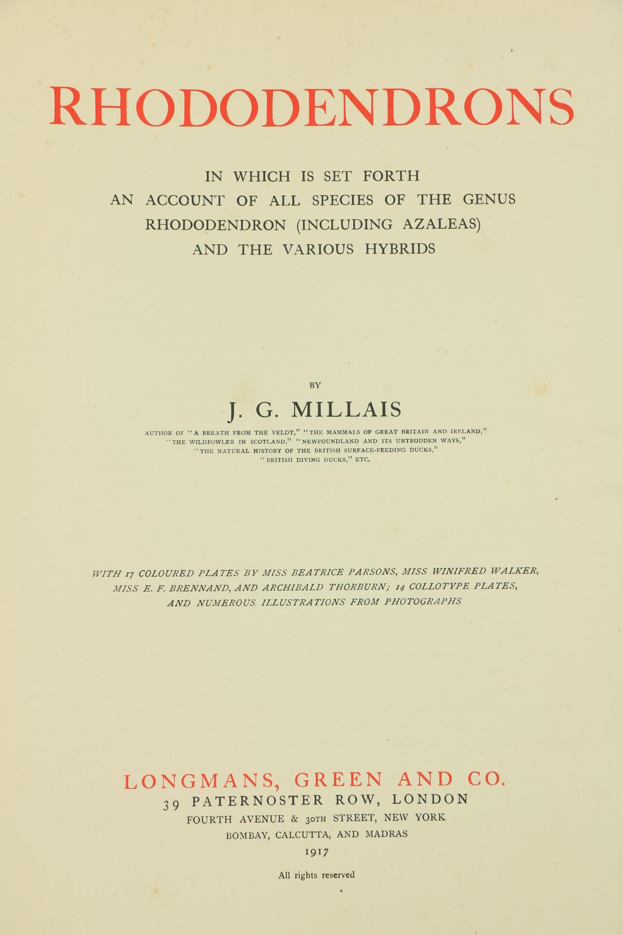 Millais (J.G.)ÿRhododendrons, ... An Account of All Species of the Genus Rhododendron (including - Image 3 of 6