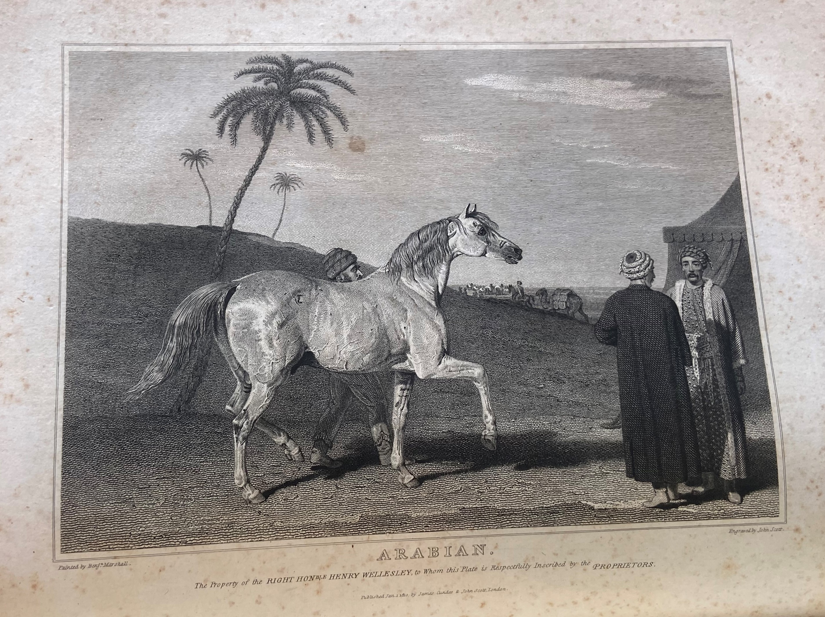 Lawrence (John)ÿThe History and Delineation of the Horse, in all its Varieties, ... Character of the - Image 3 of 3