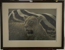 """Print of lion """"Ngorongoro Morning"""" by Lee Kromschroeder. Signed limited edition 193/400. 25"""" x"""