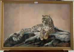 """Print of leopard by Sylvia Duran. 30"""" x 20"""", frame 33"""" x 22.5"""". Good condition"""