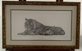 """Print of tiger and cub by Gary Hodges. Special open edition signed by the artist. 25"""" x 12"""", frame"""