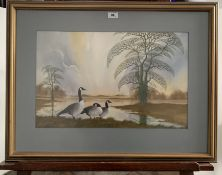 """Watercolour of Canada Geese by Robert Butler 1989. 20.5"""" x 13"""", frame 29"""" x 22"""". Good condition"""
