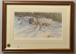 """Signed Limited Edition print of tiger by Tony Forrest, No. 244/500. 23"""" x 13"""", frame 33"""" x 24""""."""