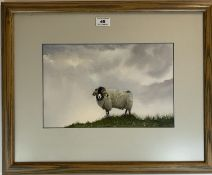 """Watercolour Of sheep by Taylor. 12.5"""" x 8"""", frame 21"""" x 17"""". Good condition"""