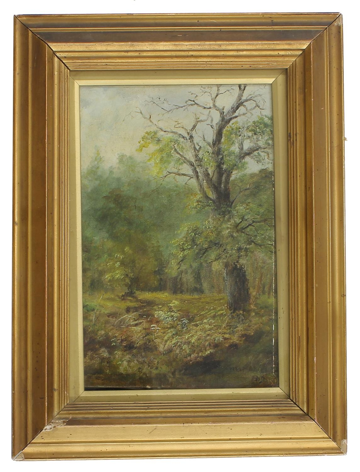 """English School (19th century) -woodland scene, oil on canvas, 12""""x 8"""" * The work is indistinctly"""