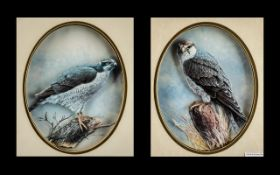 Pair of Framed and Glazed Printed Cutouts of Birds of Prey - Hawk and Falcon. Hand Crafted by J.