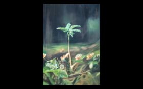 Wall Art Unframed Modern Print on Canvas - by an Iranian artist. Depicting a growing plant.