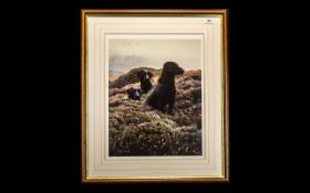 Signed Limited Edition Print of Three Black Labradors amongst Heather 'Return of the Three