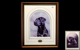 Two Limited Edition Signed Prints of Black Labradors. 1.