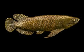 """Bronze Model of a Fish measures 11"""" in length. Heavy well carved model, see images."""