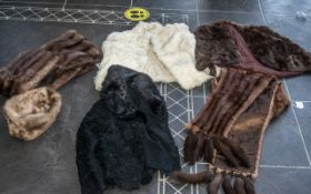 Collection of Fur Capes and Jackets, comprising a dark brown mink cape; a chestnut mink wrap with