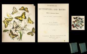 European Butterflies And Moths, Two Volu