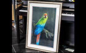 David Johnston (B.1946), British. Red And Green Macaw, Signed lower left David Johnston.