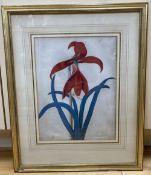 Susanna Hallon, watercolour on vellum, Amaryllis Hippeastrum - Barbados Lily, signed, 28 x 22cm