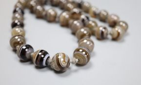 A single strand graduated banded agate bead necklace, 63cm, largest bead 15.4mm.CONDITION: The