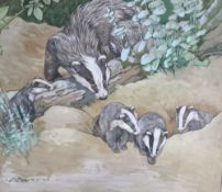Kay Nixon (1895-1988), watercolour and gouache, Badgers, painted for the book Animal Mothers and