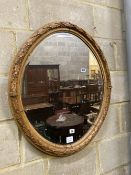 An oval laurel carved mirror, width 64cm height 75cm