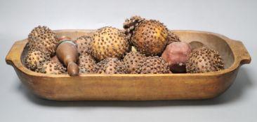 A trough, length 53cm, seed pods etc.,