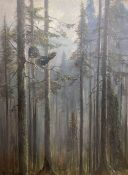 Lisa Muller, oil on canvas board, Capercaillie amongst pine trees, signed, 61 x 45cm