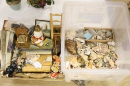 A collection of minerals, fossils and shells, together with a collection of rulers, fans and