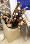 Approximately twenty two assorted provincial wood walking canes