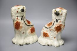 A pair of Staffordshire dogs, height 24cmCONDITION: Dog looking to his left - some repairs to his