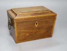 A Regency kingwood? tea caddy, length 20cm
