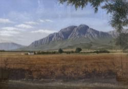 W. Ron Campbell (1930-2012), pastel, South African landscape, signed, 46 x 66cm