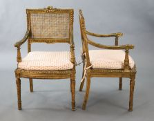 A pair of Louis XVI style walnut giltwood fauteuils, with flower and ribbon carved frames, caned