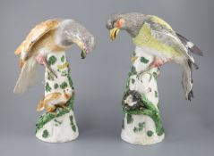 A pair of large German porcelain models of raptors, late 19th century, each seated upon a tree