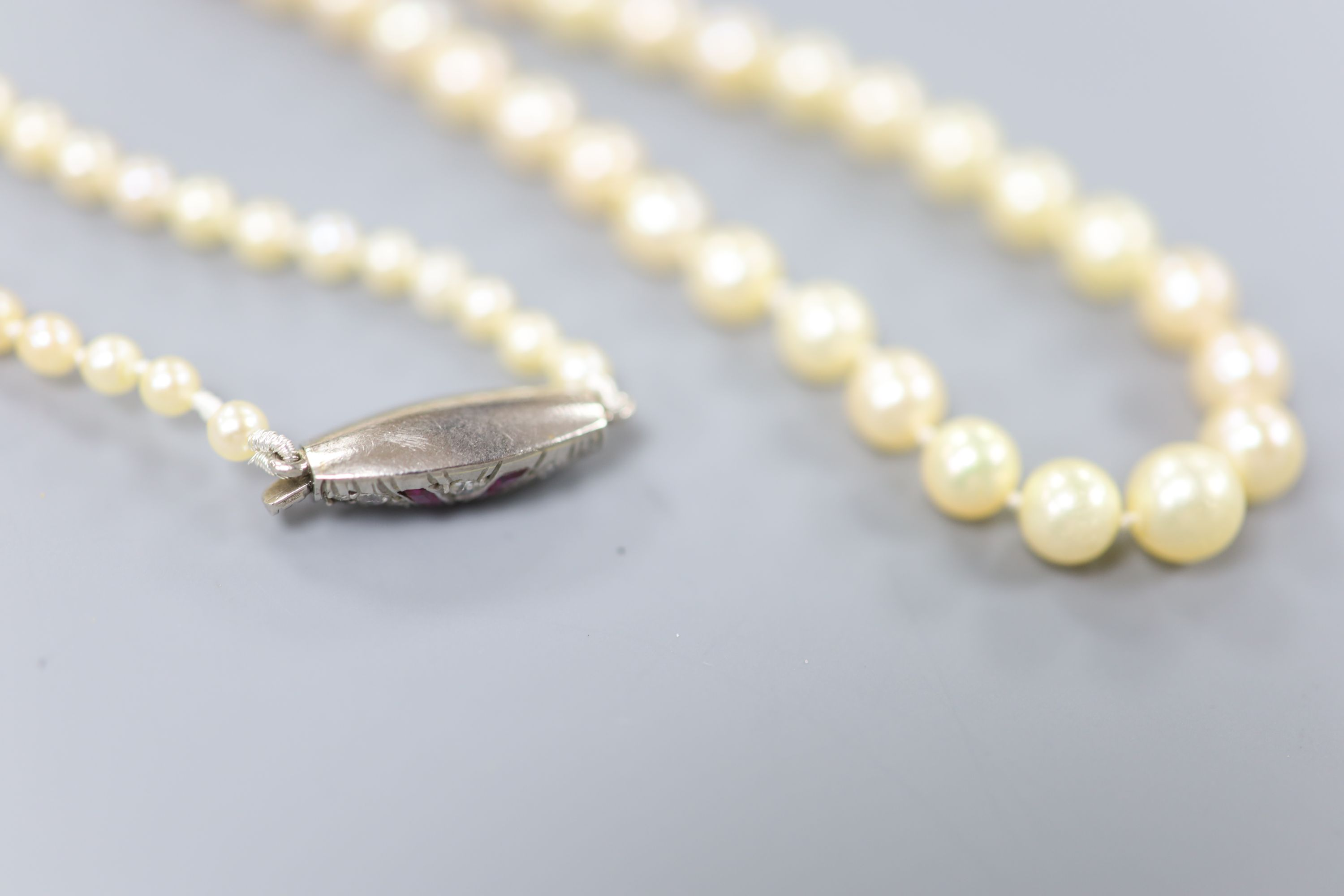 An early 20th century single strand graduated seed pearl necklace, with white metal ruby and diamond - Image 3 of 3