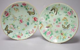 A near pair of Chinese celadon ground famille rose dishes, diameter 25cmCONDITION: One plate -