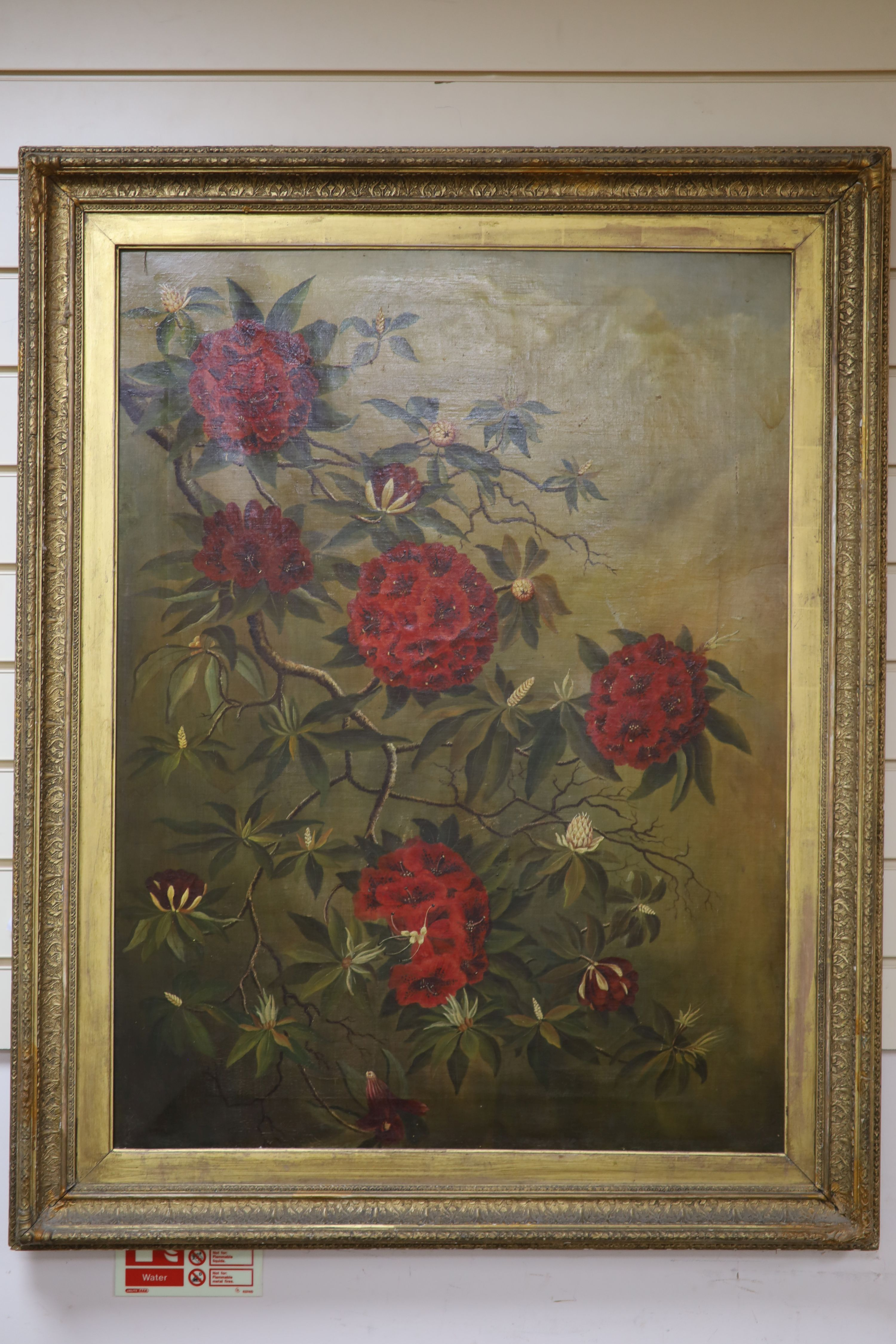 English School c.1900, oil on canvas, Study of Rhododendron blossom, indistinctly signed, 90 x 67cm - Image 2 of 2