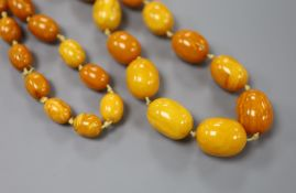 A single strand graduated amber bead necklace, 73cm, gross 101 grams.CONDITION: Largest bead approx.