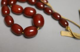 A single strand graduated simulated cherry amber necklace, 43cm, gross 75 grams.