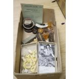 Australian and World Botanical etc. specimens, to include 'Queensland Bean from SR 1892', nuts and