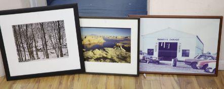 Three assorted near contemporary photographs, Woodland in winter, Coastal scene and Guineys